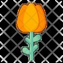 Orange Tulip Icon