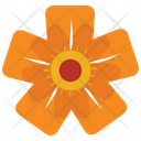 Orange Wild Flower Icon
