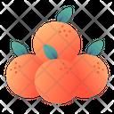 Oranges Chinese Newyear Icon