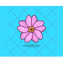 Orchid Spring Flower Agriculture Icon