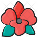 Orchid Bloom Flower Icon