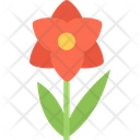 Orchid Flower Nature Icon