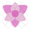 Orchid Flower Floral Icon