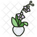 Orchid Flower Blossom Icon