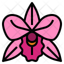 Orchid Flower Perfume Icon