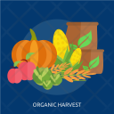 Organic Harvest Agriculture Icon