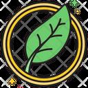 Morganic Organic Green Icon