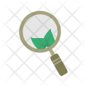 Organic Search Google Icon