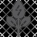 Organic Biofuel Plant Organic Biofuel Icon