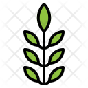 Herb Vegetarian Healthy Icon