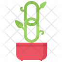Organic Link Promotion Icon
