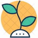 Plant Agriculture Farm Icon