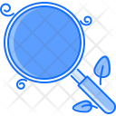Organic Search Magnifier Icon