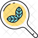 Morganic Search Icon