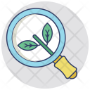 Organic Search Engine Icon