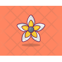 Orientla Lily Spring Flower Agriculture Icon