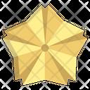 Origami Flower Icon