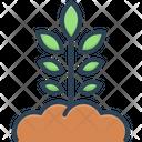 Origination Icon
