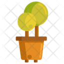 Ornamental Plant Plant Flower Icon