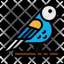 Bird Zoo Animal Icon
