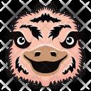 Ostrich Mascot Ostrich Face Ostrich Icon