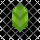 Ovate Greenery Leaf Icon