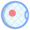 Ovum Sperm Fertilization Icon