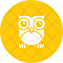 Owl Bird Night Icon