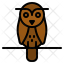 Owl Bird Animals Icon