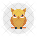 Owl Education Animal Icon