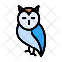 Owl Birds Autumn Icon