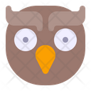 Owl Animal Animals Icon