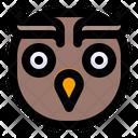 Owl Animal Animals Icon