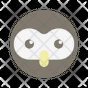 Owl Bird Animal Icon