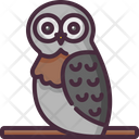 Owl Bird Hunter Icon