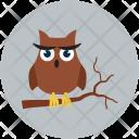 Owl Animal Halloween Icon