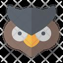 Owl Bird Night Icon