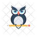 Owl Wisdom Sage Icon