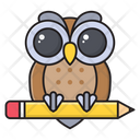 Owl Education School Icon