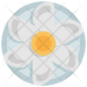 Oyster Icon