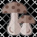 Oyster Fungi Mushroom Icon