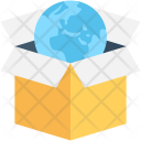 Package Box Globe Icon