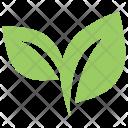 Two Symbol Ecology Icon