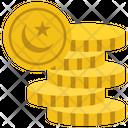Pakistani Coins Icon