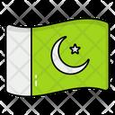 Pakistani Flag Pakistan National Flag Icon