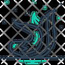 Palash Icon