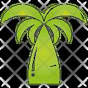 Pine Palm Tree Icon