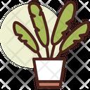 Leaf Plant Icon
