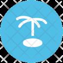 Palm Tree Coconut Icon
