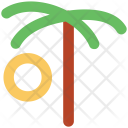 Palm Tree Date Icon